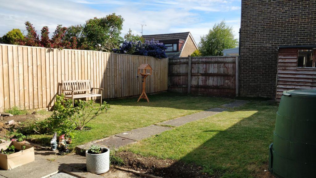 The garden in morning sunshine